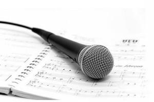 Качественное обучение вокалуКачественное обучение вокалу